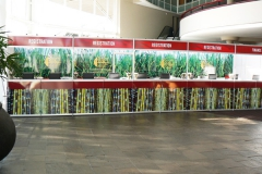 Exhibition-SASTA-Exhibition-Stands-Events-South-Africa